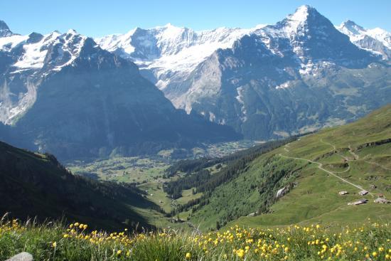 Grindelwald, Zwitserland: Wetterholn & Eiger