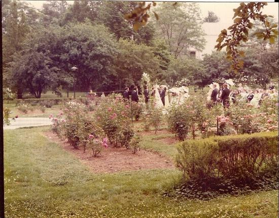 Wedding 1973 picture of raleigh little theatre rose garden raleigh tripadvisor for Raleigh little theater rose garden