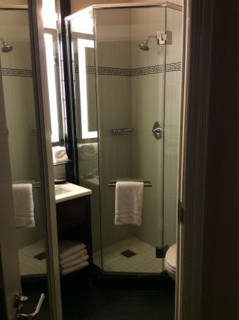 Algonquin Hotel: photo0.jpg