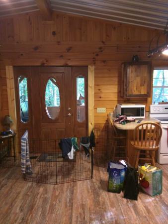 Springwood Cabins: front door