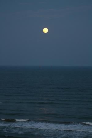 Sea Gull Condominiums : Moonrise