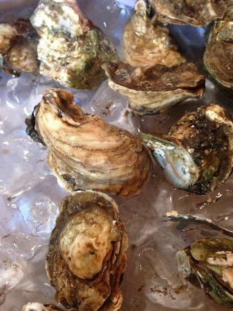 Hacienda del Lago Boutique Hotel: Fresh Oysters