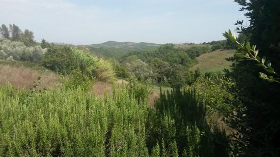 Parrano, Italia: The view from back door