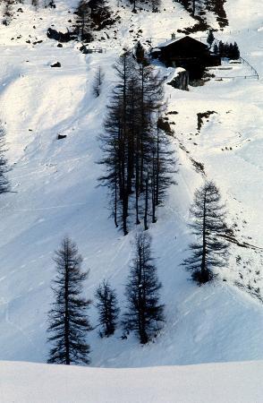 Grisons, Schweiz: scorcio invernale