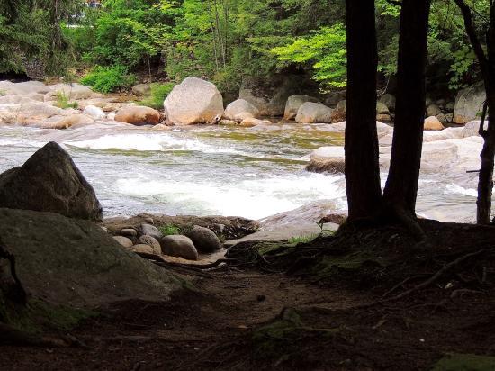 Deer Park Resort: Vue arrière, donnant sur la rivière