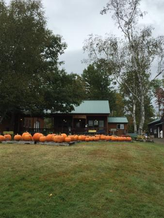 Haverhill, Nueva Hampshire: Windy Ridge Orchard September 29,2015.