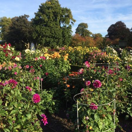 Jardin des plantes de rouen picture of jardin des for Jardine des plantes