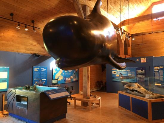 Pleasant Bay, Canadá: Whale Interpretive Centre
