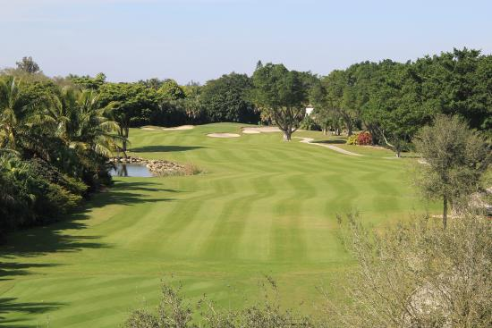 Jacaranda Golf Club: West Course #6
