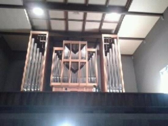 Saint Nicolao of Flue: Órgão da Igreja