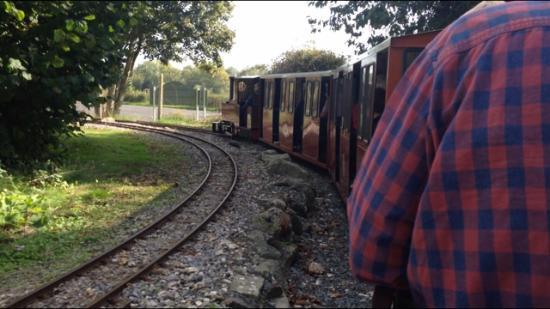 ‪South Downs Light Railway‬