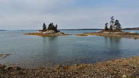 Allen's Seafood: Lookout Point, Harpswell, ME