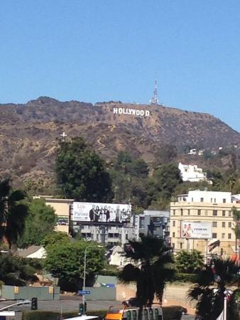 The heart of hollywood!