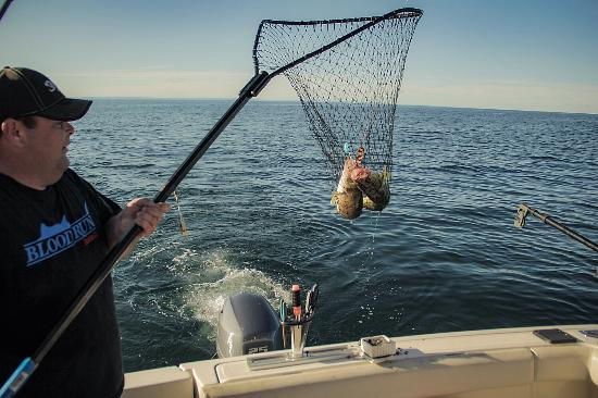 Dunnville, Canada: Hall' Em In Sportfishing