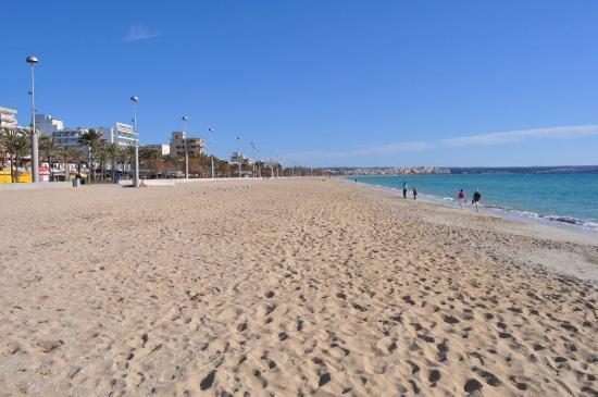 Hotel Palma Playa Los Cactus : pláž