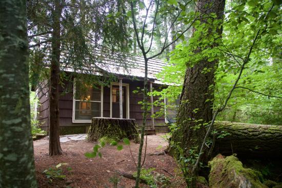 Prospect, Oregón: Cabin #21