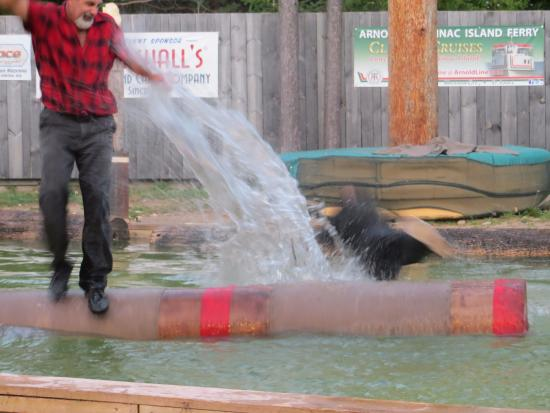 Jack Pine Lumberjack Show: whoops -- young guy lost