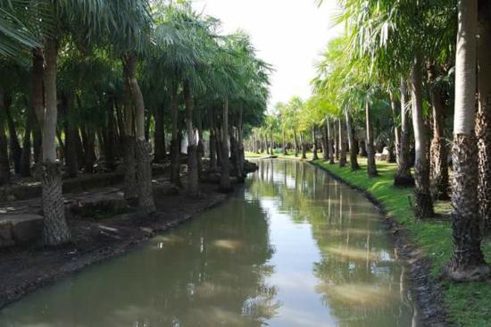 Khlong Khuean, Thailand: สวนสวยๆ