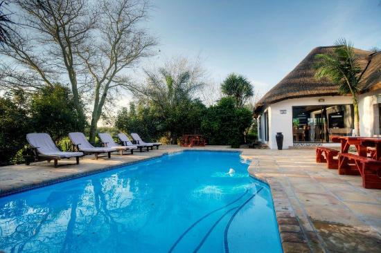 Addo, جنوب أفريقيا: Pool