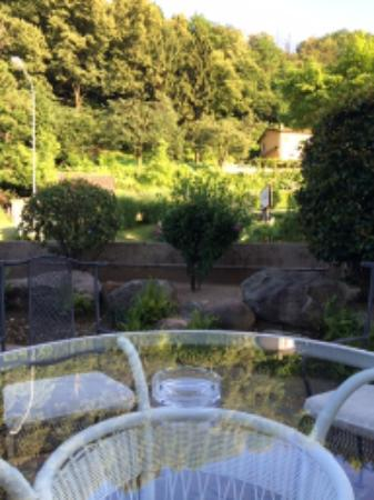Albergo Gardenia : Bahçeden Görüntü