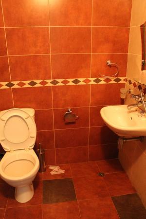 Ahtopol, Bulgaria: Душ/туалет в трехместном номере