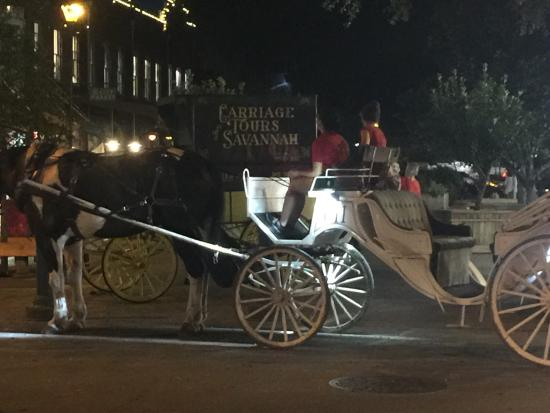 Picture Of Carriage At Night Carriage Tours Of Savannah Savannah