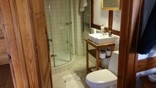 The Blue Beetroot: bathroom in room