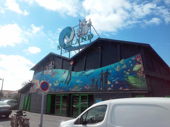 photo4 jpg foto di aquarium de noirmoutier ile de noirmoutier tripadvisor