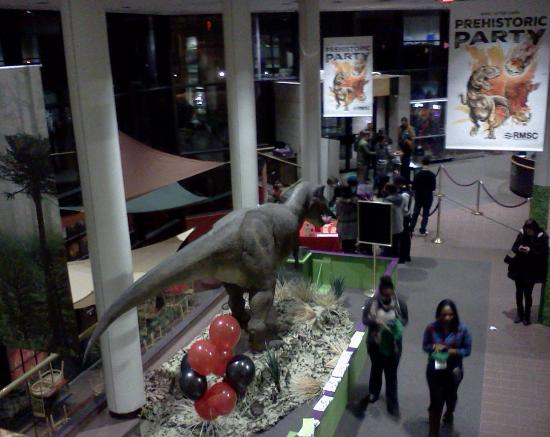Rochester Museum & Science Center: Looking down on the entrance