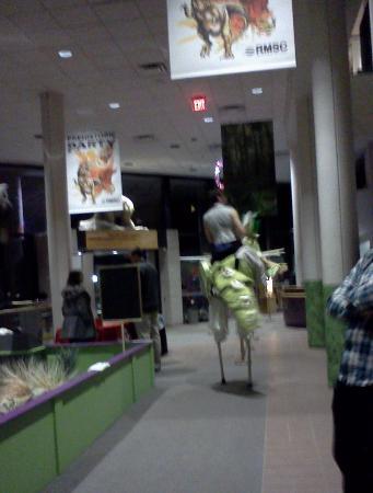 Rochester Museum & Science Center: Creative costume