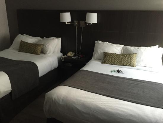 V Hotel and Suites : V Hotel Room