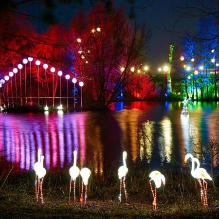 Wetherby, UK: The Magical Enchanted Forest at Stockeld Park