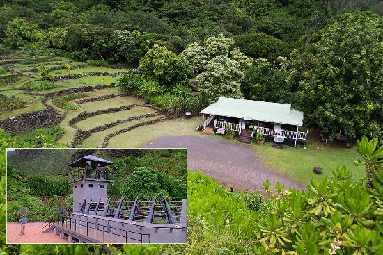 Jurassic Park Raptor Paddock Filmed at this Site - Picture of ...