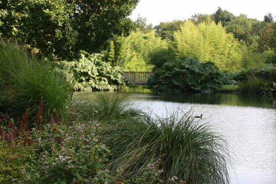 Jardin paysager picture of jardin du conservatoire for Photo de jardin paysager