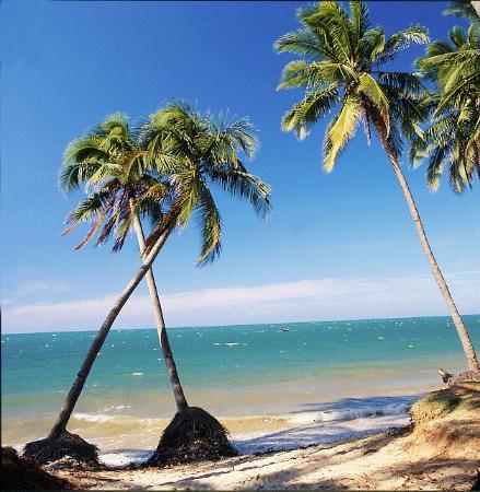 Golden Coast Resort and Spa: Playa Phanthiet