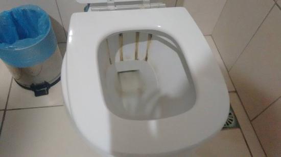 Esse é o estado do vaso sanitário do banheiro feminino do restaurante do hote -> Banheiro Feminino De Restaurante