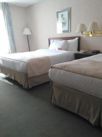 Getzville, estado de Nueva York: hotel room
