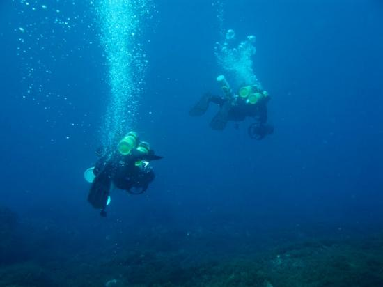 Pyrgos, Greece: ileia dive center