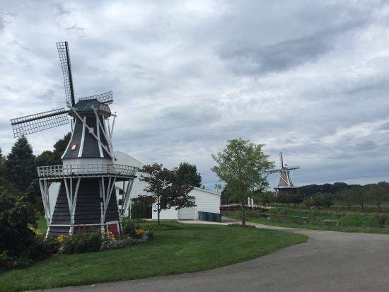Windmill Island - De Zwaan Windmill: photo0.jpg