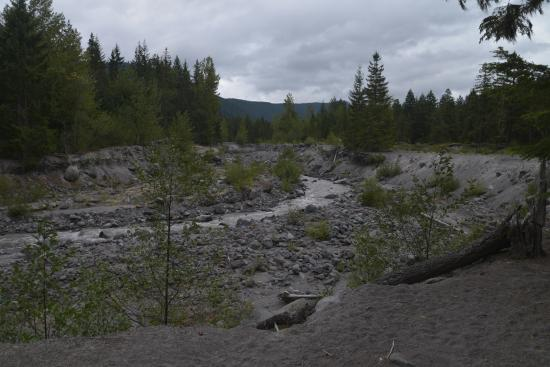 Rhododendron, OR: sandy river