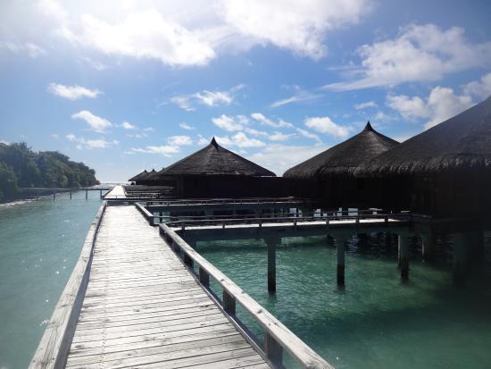 Kuramathi: Walkway to water villas