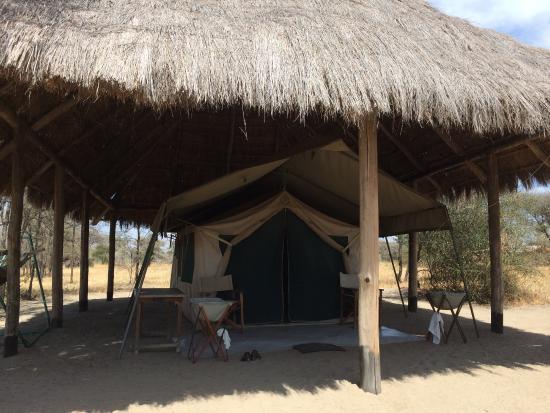 Whistling Thorn Tented Camp: Zelt