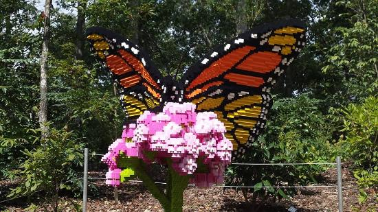 Lego Butterfly Picture Of Atlanta Botanical Garden
