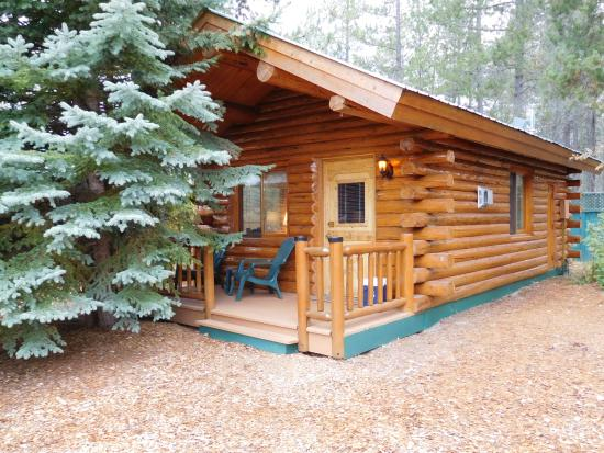Silverwolf Log Chalet Resort: Exterior of our cabin.