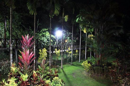 Sepilok Forest Edge Resort: wildness and beauty  :-)