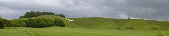 Cherhill White Horse and Monument: The Cherhill White Horse