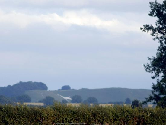 Cherhill White Horse and Monument: Cherhill White Horse from Hilmarton