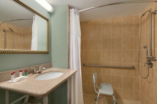 هوليداي إن جاكسون فيل إي - آي - 95 بايميدوز: Bathroom