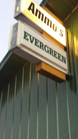 Ammo's Evergreen Tavern