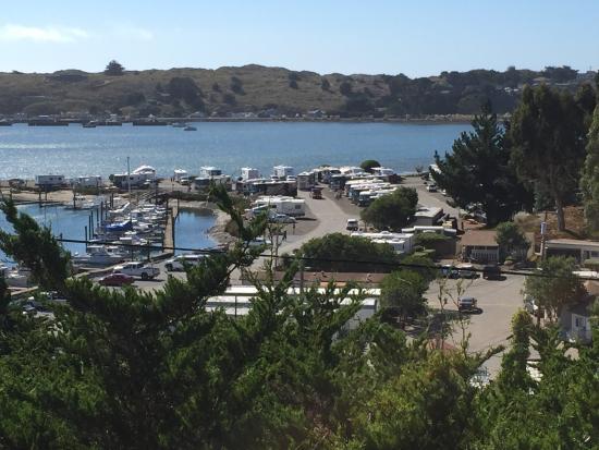 Porto Bodega Marina & RV Park: Looking down on RV park and Marina from HWY 1